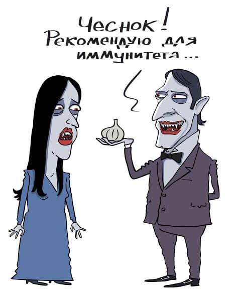 чеснок-от-вампиров-и-для-иммунитета