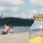 Мудроеды на золотом пляже - 7