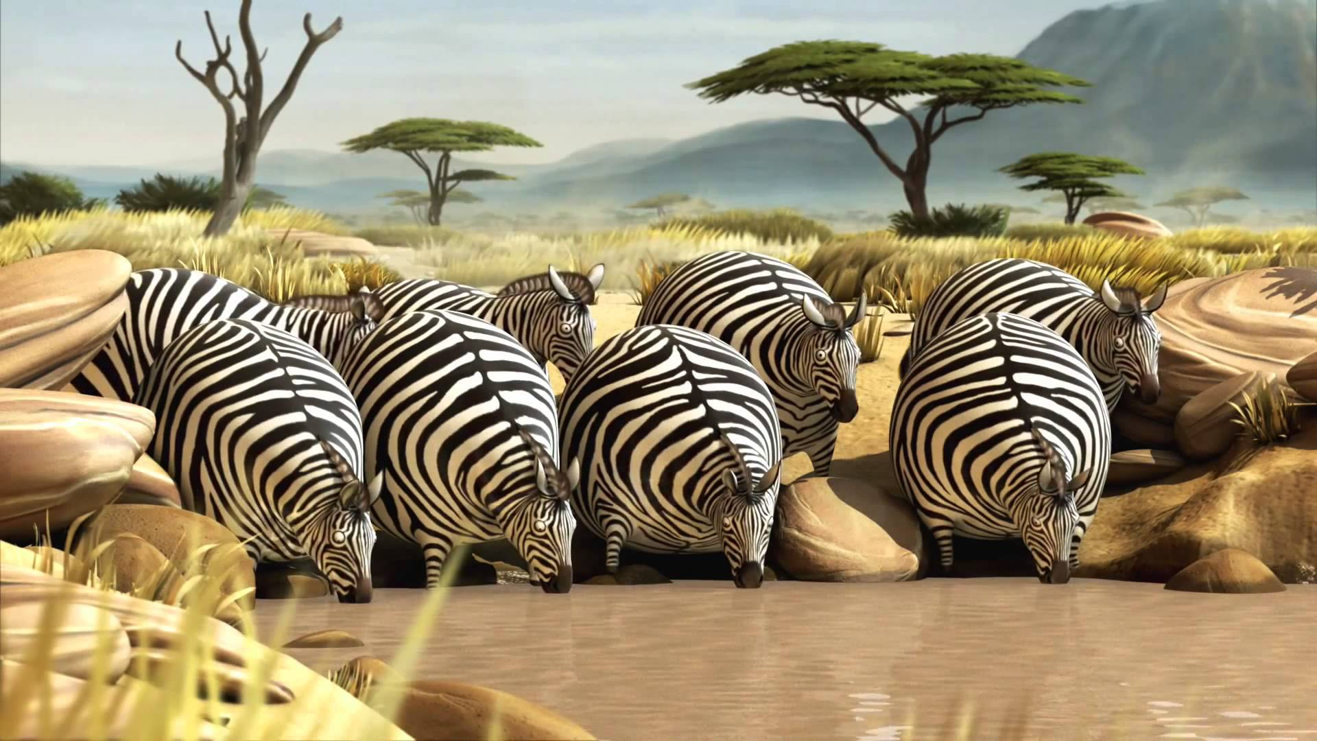 полные зебры